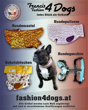 ishf-fashion4dogs-sujet-kampagne.png